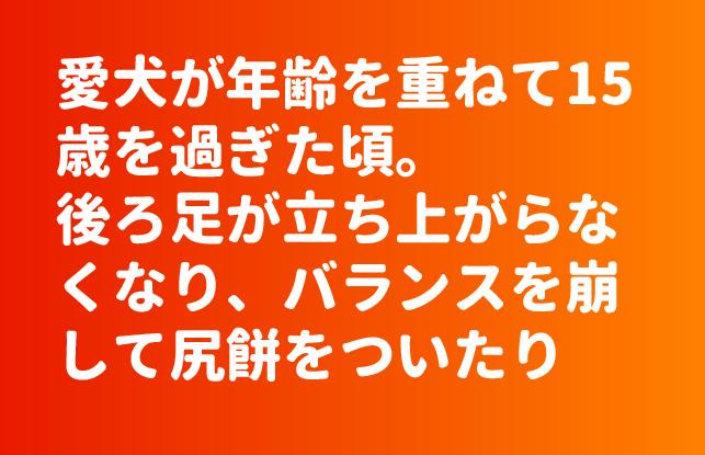 ファイル 3