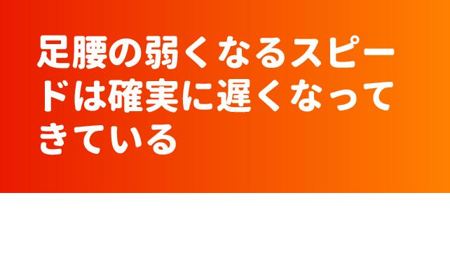 ファイル 6