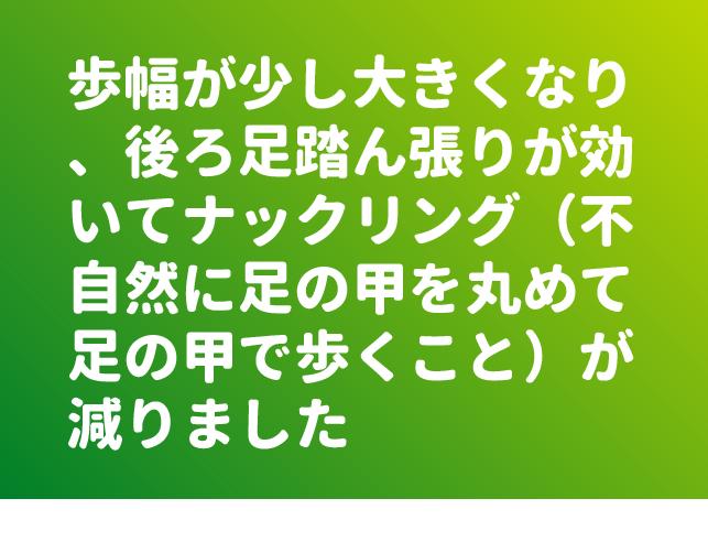 ファイル 8