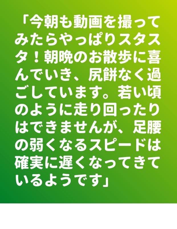 ファイル 9