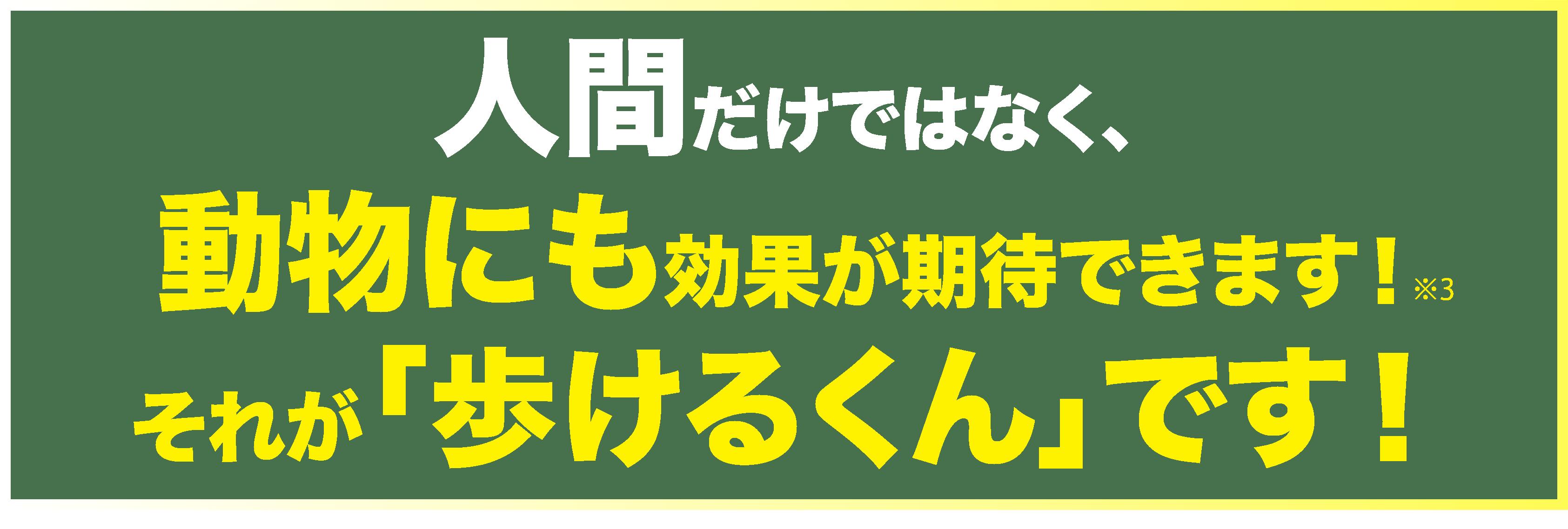 ファイル 4